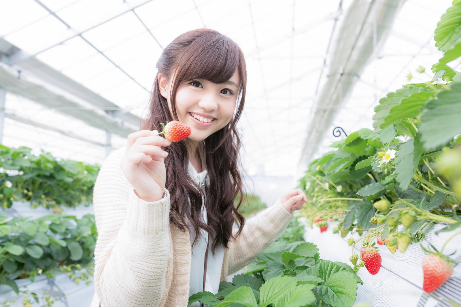 草莓田裡的邂逅